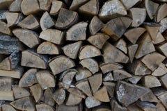 Fondo di struttura di legni della foresta immagine stock libera da diritti
