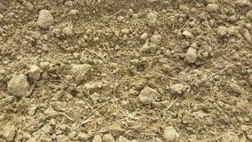 Fondo di struttura sabbia/del suolo Struttura astratta Immagine Stock