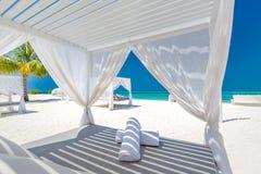Fondo di stupore di vacanze estive Paesaggio di lusso della spiaggia con il baldacchino e le chaise-lounge bianchi della spiaggia immagine stock