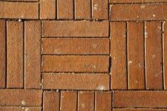 Fondo di Sunny Red Brick Tiled Floor - alto vicino fotografia stock libera da diritti
