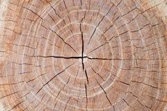 Fondo di superficie di struttura di vecchio legno per progettazione Fotografia Stock Libera da Diritti