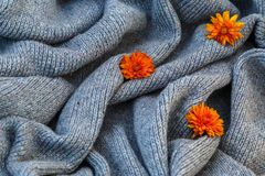 Fondo di tela grigia tricottata della lana del ` s della capra fatta con il knitti Immagini Stock Libere da Diritti