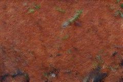 Fondo di tema della terra naturale fotografia stock