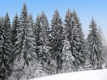 Fondo di tema di vacanza invernale Fotografie Stock Libere da Diritti
