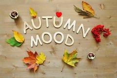 Fondo di umore di autunno fotografia stock libera da diritti