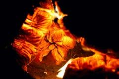 Fondo di un fuoco e di una legna da ardere bruciante Fotografia Stock