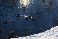Fondo di una superficie del fiume che splende da una luce solare Fotografie Stock