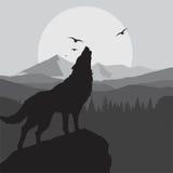 Fondo di urlo del lupo nel colore grigio illustrazione vettoriale