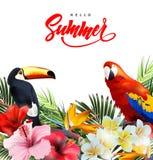 Fondo di vacanze estive con i fiori tropicali con i pappagalli tropicali variopinti ed il tucano Iscrizione dell'estate con lette Immagine Stock Libera da Diritti