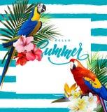 Fondo di vacanze estive con i fiori tropicali con i pappagalli tropicali variopinti Iscrizione del vettore con lettere del modell Fotografia Stock
