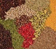 Fondo di vari generi di spezie Immagini Stock Libere da Diritti