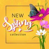 Fondo di vendita della primavera con il bello fiore variopinto royalty illustrazione gratis