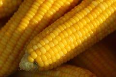 Fondo di verdure dell'alimento del cereale bollito primo piano Fotografia Stock Libera da Diritti