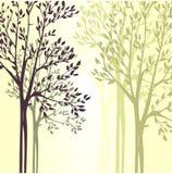 Fondo di vettore con gli alberi della molla Immagine Stock