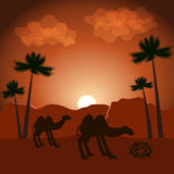 Fondo di vettore con i cammelli Fotografie Stock Libere da Diritti