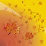 Fondo di vettore con il testo di Autumn Leaves And Space For Immagini Stock Libere da Diritti