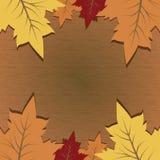 Fondo di vettore con il testo di Autumn Leaves And Space For Fotografia Stock