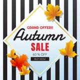 Fondo di vettore dell'insegna del modello di vendita di autunno Fotografia Stock