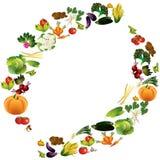 Fondo di vettore delle verdure con il posto per testo, alimento sano t Immagini Stock Libere da Diritti