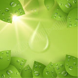 Fondo di vettore di goccia del collagene EPS10 Immagine Stock