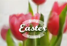 Fondo di vettore di Pasqua Fotografie Stock