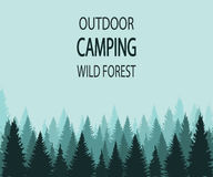 Fondo di VETTORE: foresta selvaggia di campeggio all'aperto Fotografia Stock
