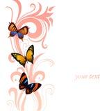 Fondo di volata variopinta delle farfalle Fotografia Stock