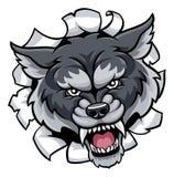 Fondo di Wolf Sports Mascot Tearing Through Immagine Stock Libera da Diritti