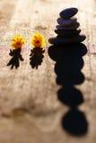 Fondo di Zen Stones Sunset With Flowers Fotografia Stock