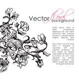 Fondo dibujado mano floral del bosquejo del vector ilustración del vector