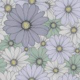 Fondo dibujado mano floral inconsútil hermosa con la manzanilla de la flor Fotografía de archivo