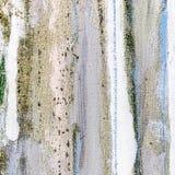 Fondo dipinto a mano multicolore a strisce della tela Fotografia Stock