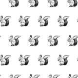 Fondo disegnato a mano con lo scoiattolo Vector il reticolo senza giunte fotografie stock libere da diritti