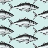 Fondo disegnato a mano dei frutti di mare di schizzo Modello senza cuciture di vettore con il pesce Illustrazione d'annata del to Fotografie Stock