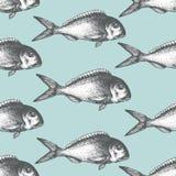 Fondo disegnato a mano dei frutti di mare di schizzo Modello senza cuciture di vettore con il pesce Illustrazione d'annata di dor Immagine Stock Libera da Diritti