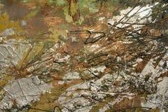 Fondo dorato della pittura a olio con le tonalità verdi Fotografia Stock Libera da Diritti