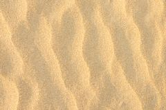 Fondo dorato della sabbia fine della spiaggia Chiarore di Sun di colori pastelli di struttura di Wave dell'ondulazione spazio vuo Immagini Stock Libere da Diritti