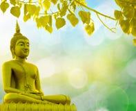 Fondo dorato di religione del sacerdote della statua di Buddha immagine stock