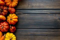 Fondo e struttura di Autumn Thanksgiving con le foglie e le piccole zucche che circondano la struttura fotografia stock