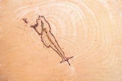 Fondo e textrue di legno Fotografie Stock Libere da Diritti