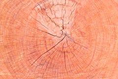 Fondo e textrue di legno Fotografie Stock