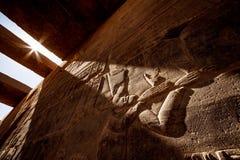 Fondo egiziano antico dei hyeroglyphs alla luce di tramonto al tempio Philae di Assuan nell'Egitto immagine stock libera da diritti