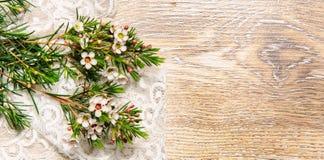 Fondo elegante lamentable con las flores y cordón en la textura de madera imagenes de archivo