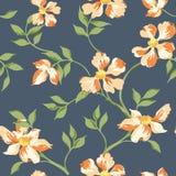 Fondo elegante lamentable floral Imagenes de archivo