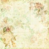 Fondo elegante misero verde con i fiori Fotografia Stock