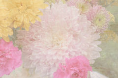 Fondo en colores pastel de la flor Foto de archivo