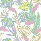 Fondo en colores pastel del blanco de la selva Imágenes de archivo libres de regalías