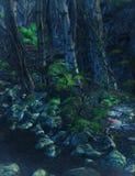 Fondo encantado del bosque Imagenes de archivo