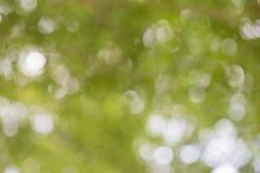 Fondo enmascarado verde Imagen de archivo