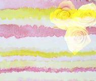 Fondo escénico de la flor de la acuarela con las rosas amarillas, libre illustration